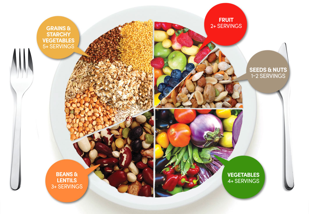 diet eating guide