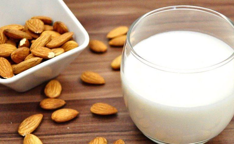 5 receitas de leite vegetal