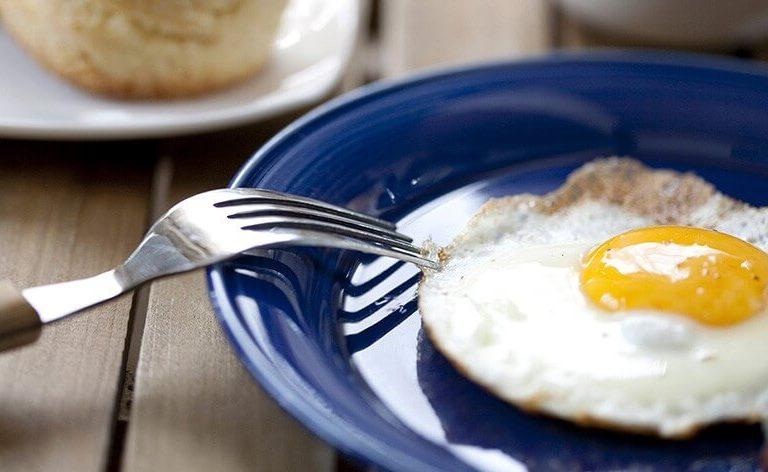 Imagine comer um ovo que não veio de uma galinha nem de nenhuma outra ave