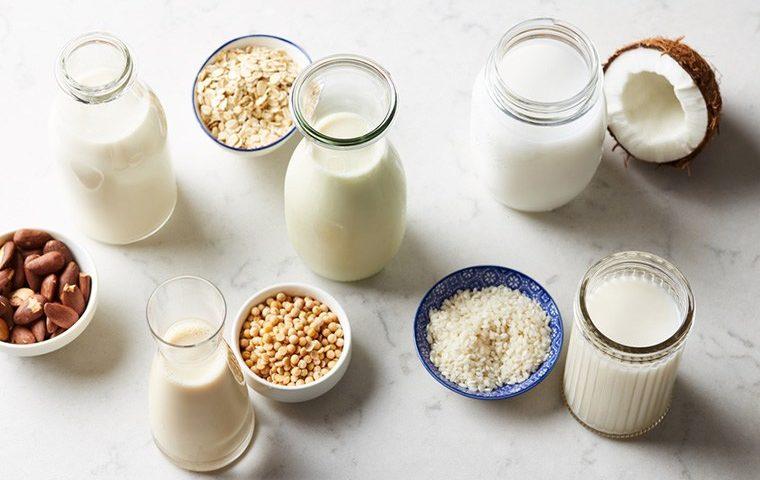 Por que incluir o leite vegetal na sua alimentação?